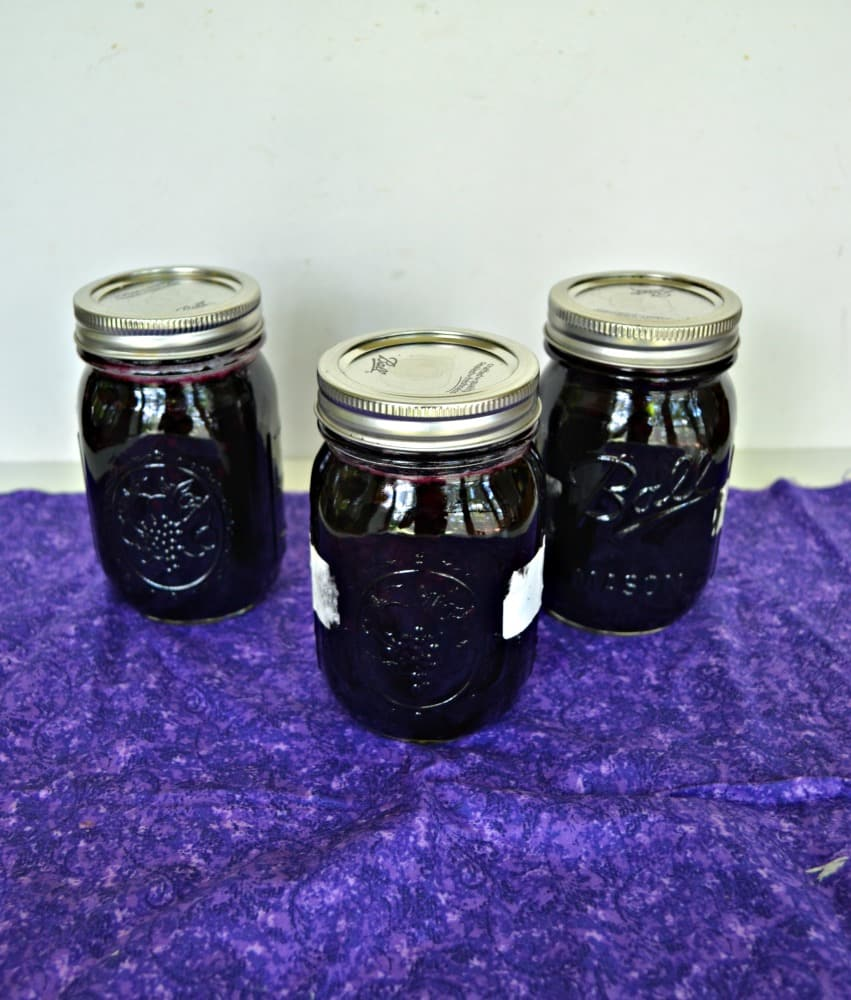 Delicious Blueberry Pie Filling!