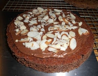 Chocolate cake topped with Nutella Frosting and Almonds.