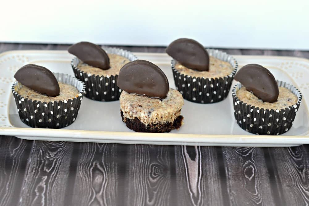 Thin Mint Cheesecakes from Hezzi-D's Books and Cooks