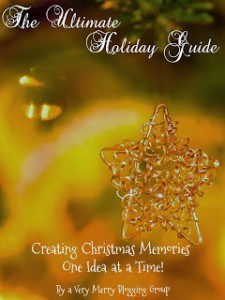 Exciting news! Our brand new ebook (The Ultimate Holiday Guide) comes out today!