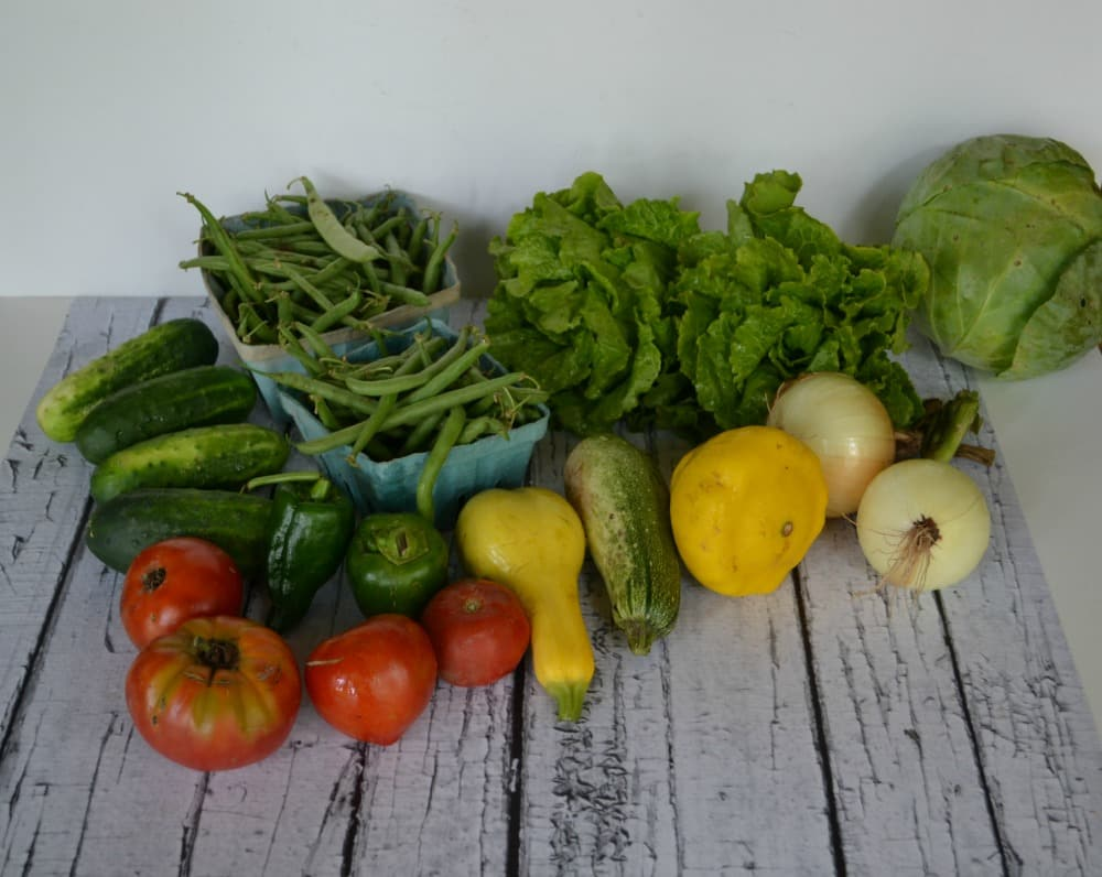 Our CSA share for the week
