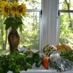 CSA Wednesdays: Purslane, Pepper, and Onion Quiche