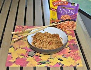 Tasty Bite Review: Kung Pao Noodles (vegan)