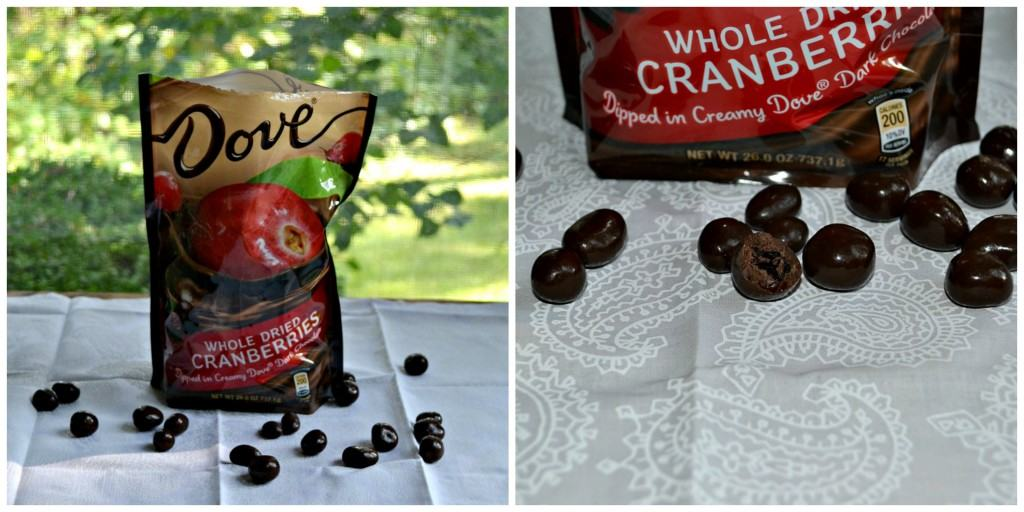 Dove Dark Chocolate Cranberries