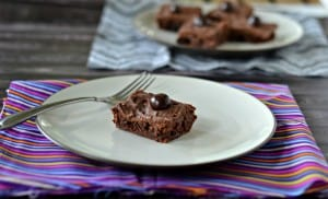 Triple Chocolate Cranberry Brownies:  Dark Chocolate Recipes
