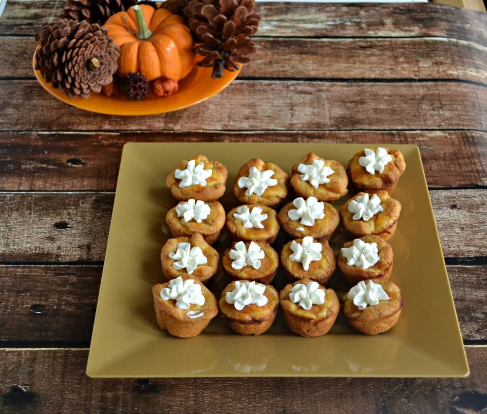 Mini Pumpkin Pies with Cinnamon Whipped Cream