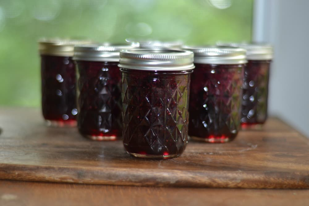 Fresh and Delicious Blueberry Jam