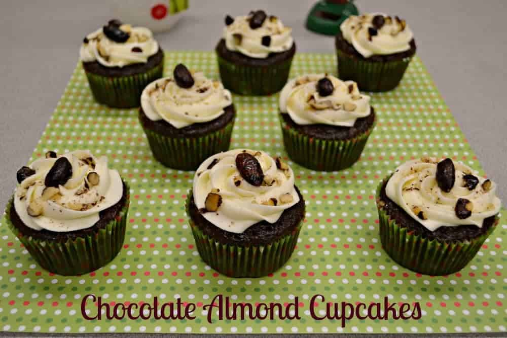 Chocolate Almond Cupcakes made with Planter's Cocoa Almonds