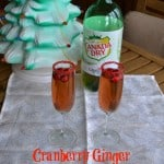 2 Fun Holiday Beverage Recipes:  A Cocktail & a Mocktail