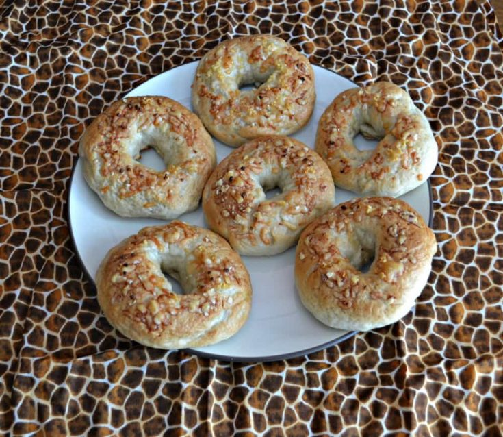 Homemade Bagels with Parmesan Cheese and Garlic