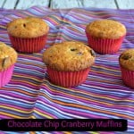 Chocolate Chip Cranberry Muffins + Review of 125 Best Chocolate Chip Recipes