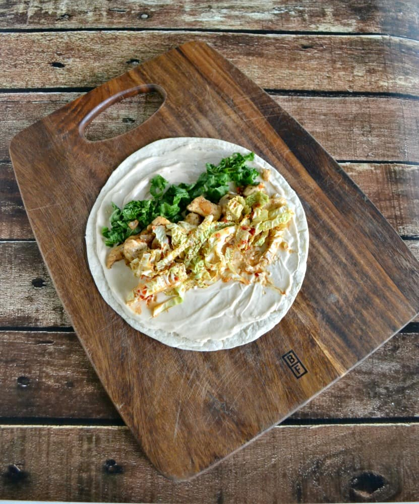 Tasty Asian Chicken Wraps with a Soy Yogurt Sauce