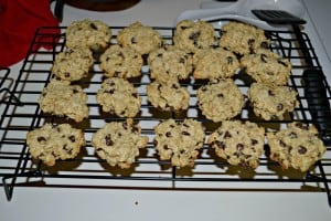 Chocolate Chip Cookies + Review of America's Best Cookbook for Kids with Diabetes