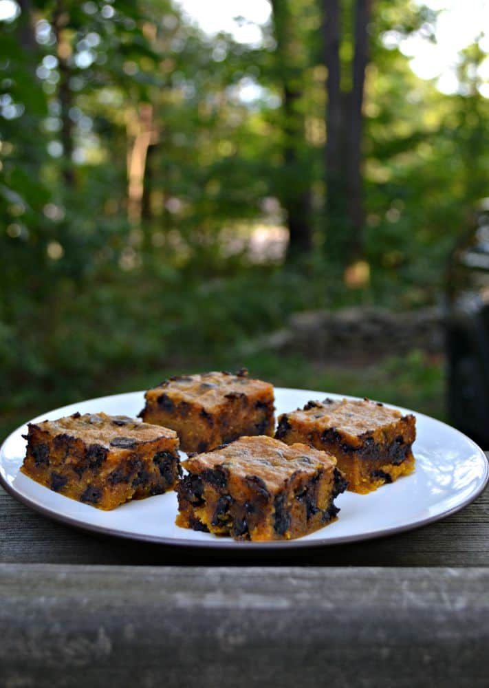 Delicious Gooey Pumpkin Chocolate Chip Bars are a tasty fall treat