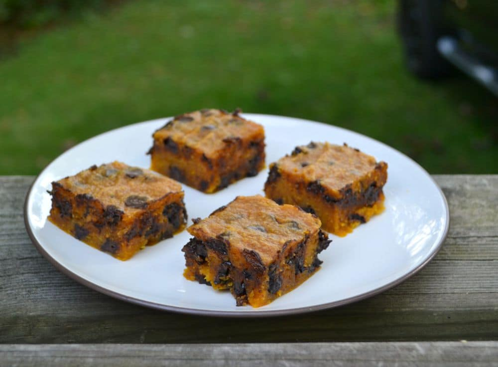 You are going to love these gooey Pumpkin Chocolate Chip Bars