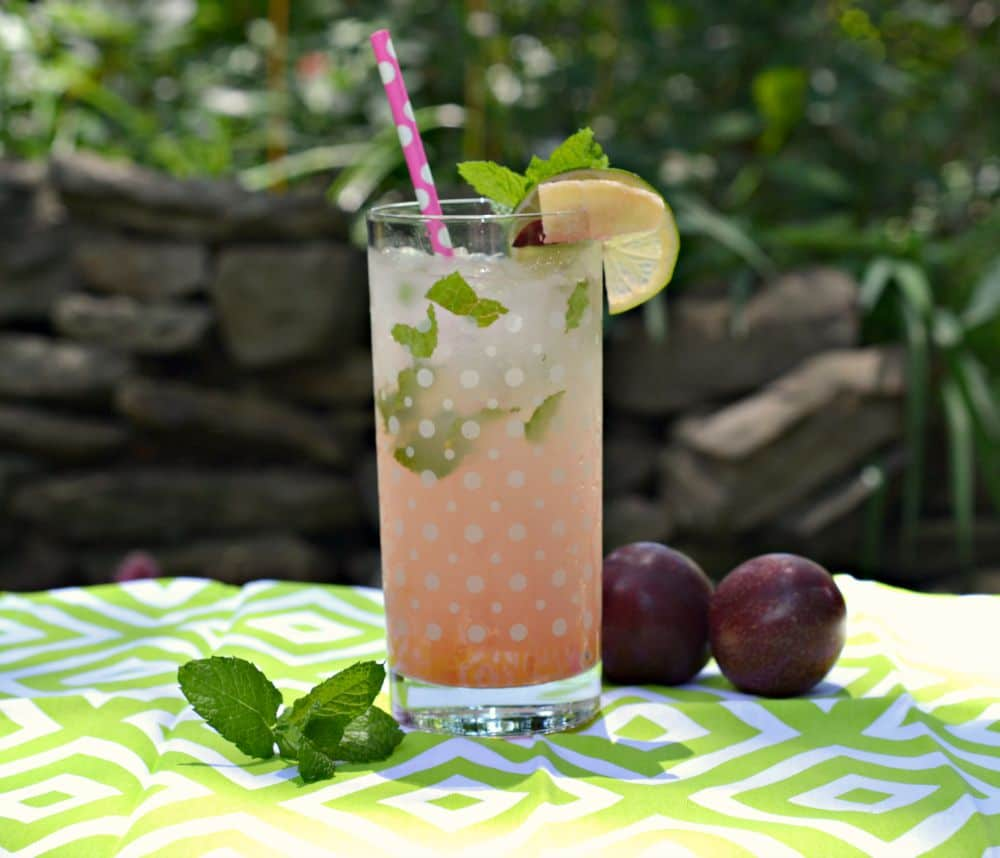 Fun Plum Ginger Mojito Recipe