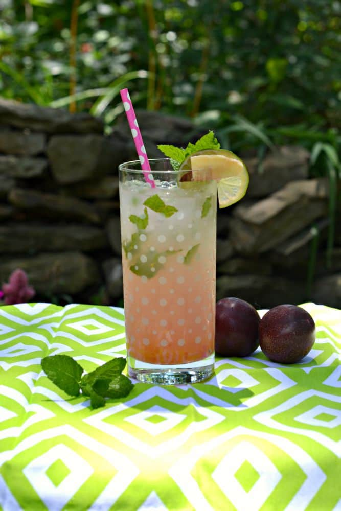 Delicious Plum Ginger Mojito Recipe