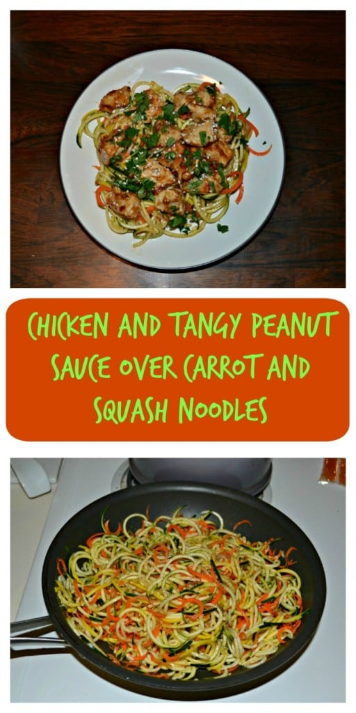 Try this Chicken and Tangy Peanut Sauce over Carrot and Squash Noodles recipe
