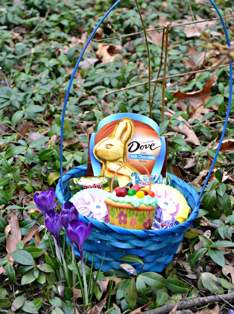 Making an Easter basket? Don't forget to put an Easter Basket Cupcake in it!