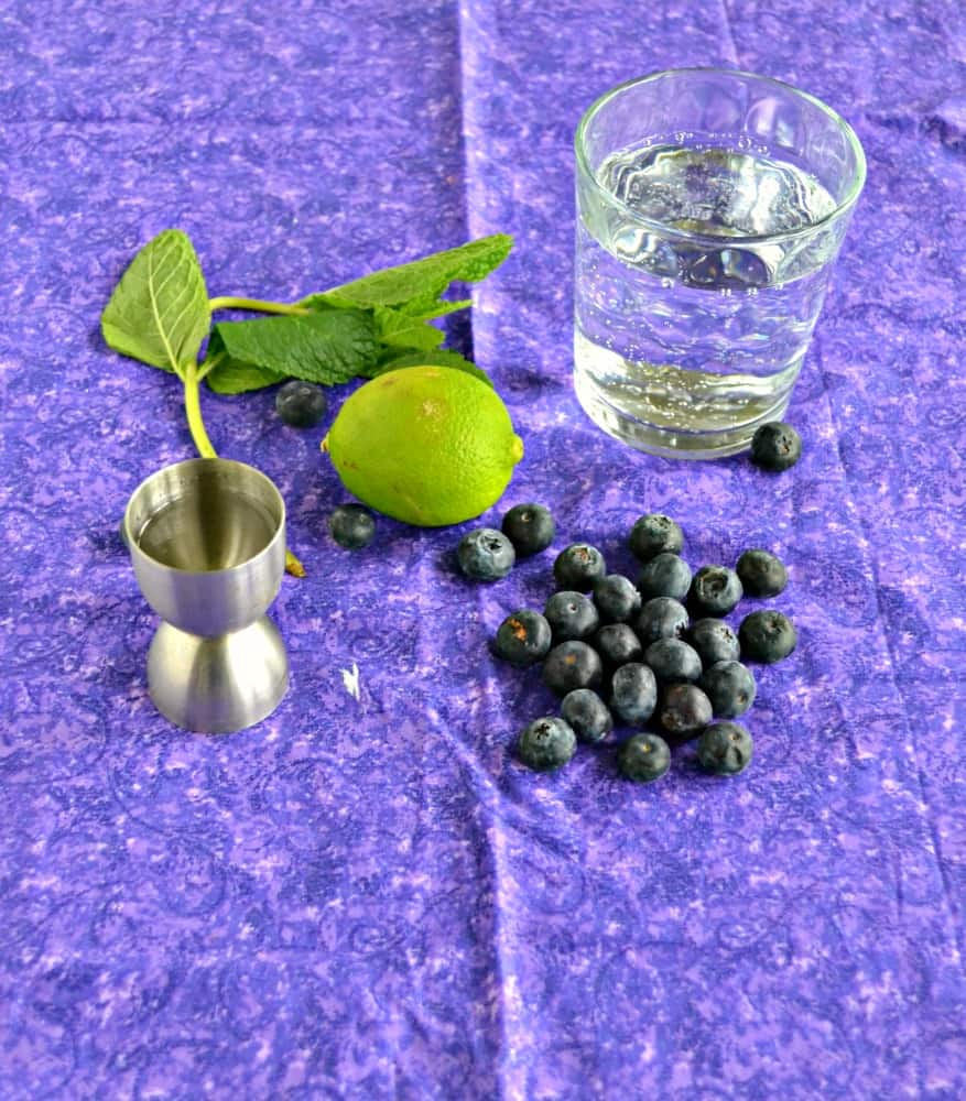 Everything you need to make a Blueberry Mojito
