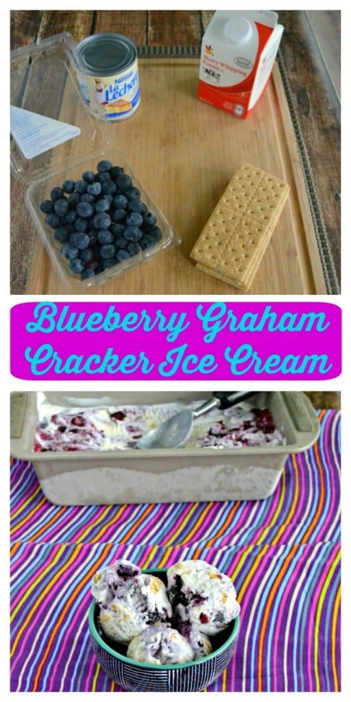 Grab a spoon and get ready to dig into this No Churn Blueberry Graham Cracker Ice Cream!