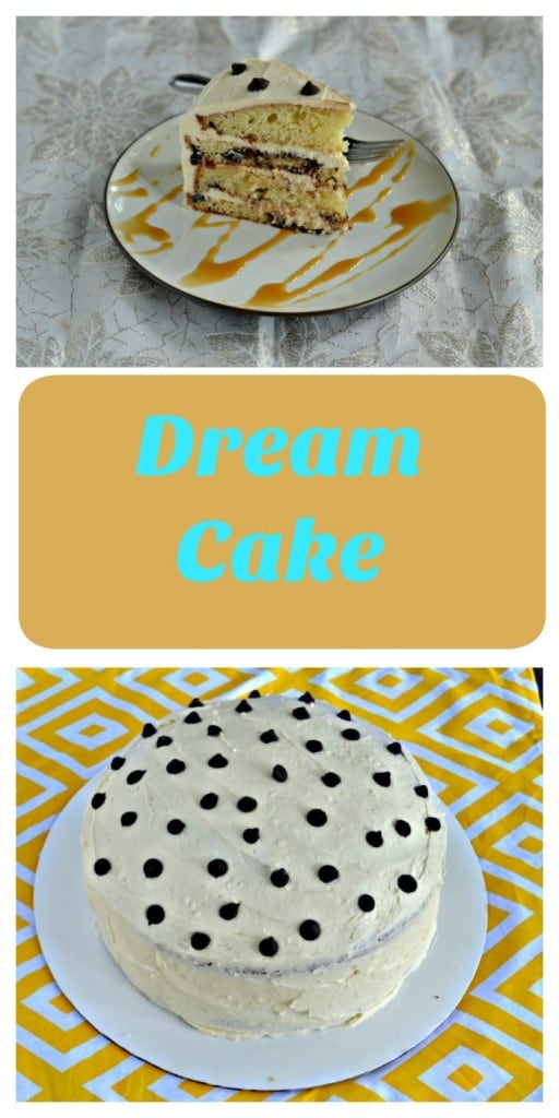 Love this delicious Dream Cake made with Coconut Chocolate Chip Cake, soaked in Sweet Cream Syrup, then layered with Salted Caramel Frosting.