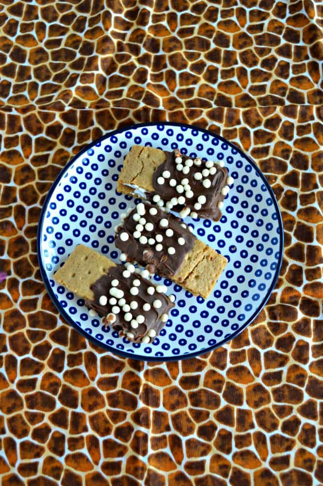 Try these Chocolate Covered S'mores topped with fun sprinkles and chocolate!