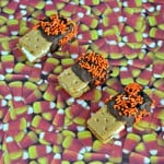 You can make these Chocolate Covered S'mores for any holiday by using sprinkles in the holiday color!