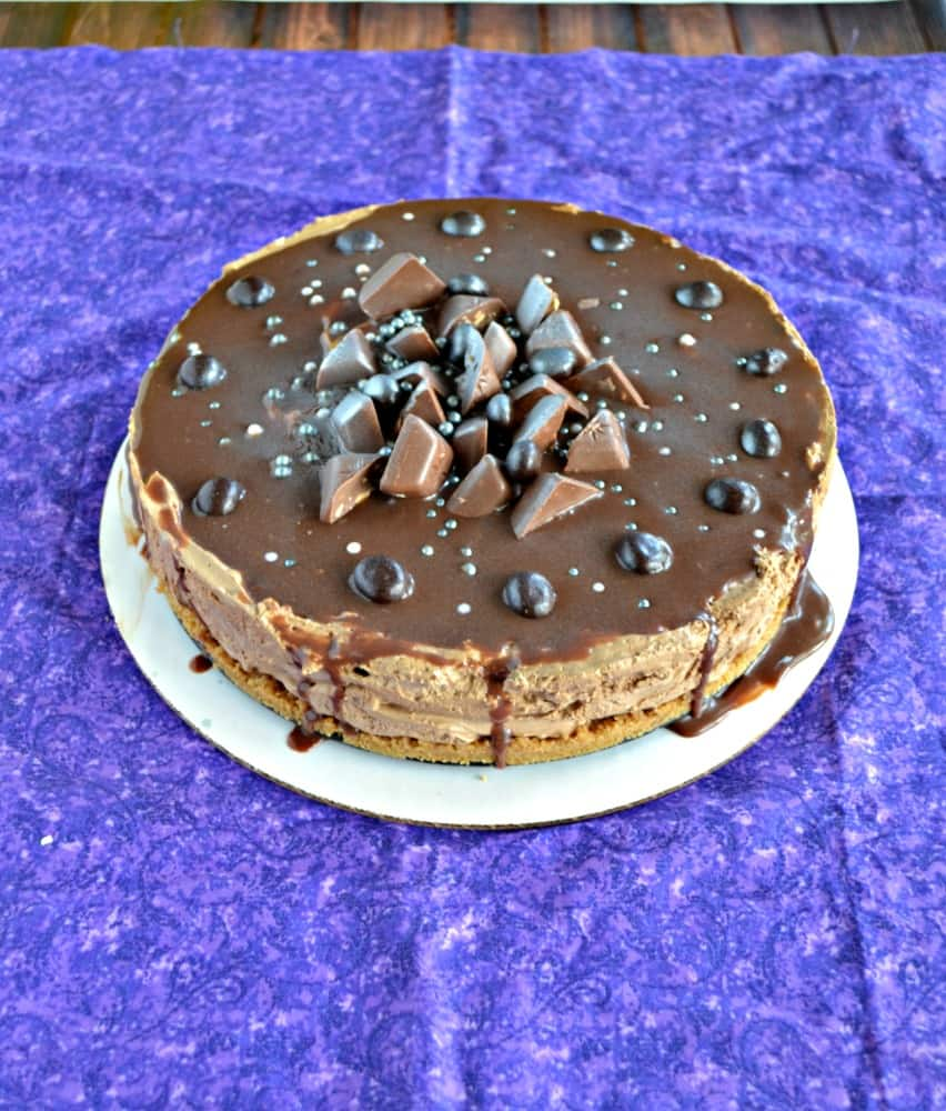 This No Bake Mocha Cheesecake is delicious and easy to make!