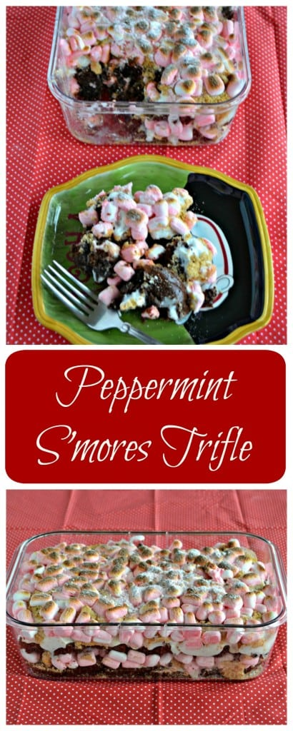 Looking for a delicious holiday dessert? Check out this easy to make Peppermint S'mores Trifle recipe!