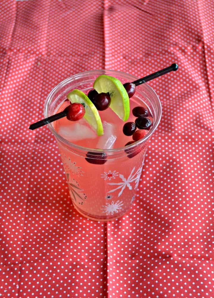 Try this tasty Cranberry Moscow Mule for a holiday cocktail!