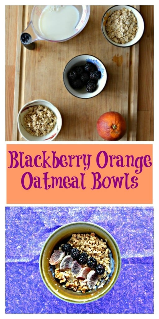 Everything you need to make these hearty and delicious Blackberry Orange Oatmeal Bowls!
