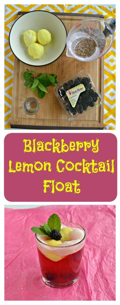 Everything you need to make a Blackberry Lemon Cocktail Float
