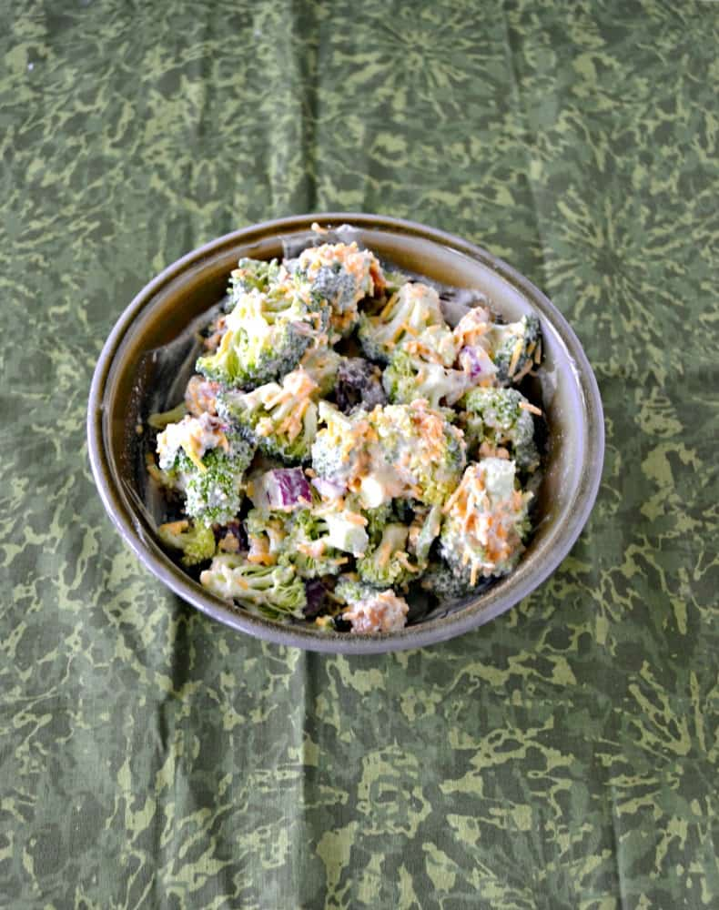 Looking for a tasty picnic recipe? Check out this Broccoli Salad with Cranberries and Walnuts