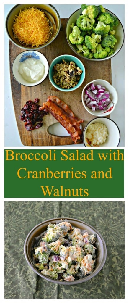 We love this cold Broccoli Salad with Cranberries, Walnuts, and Bacon!
