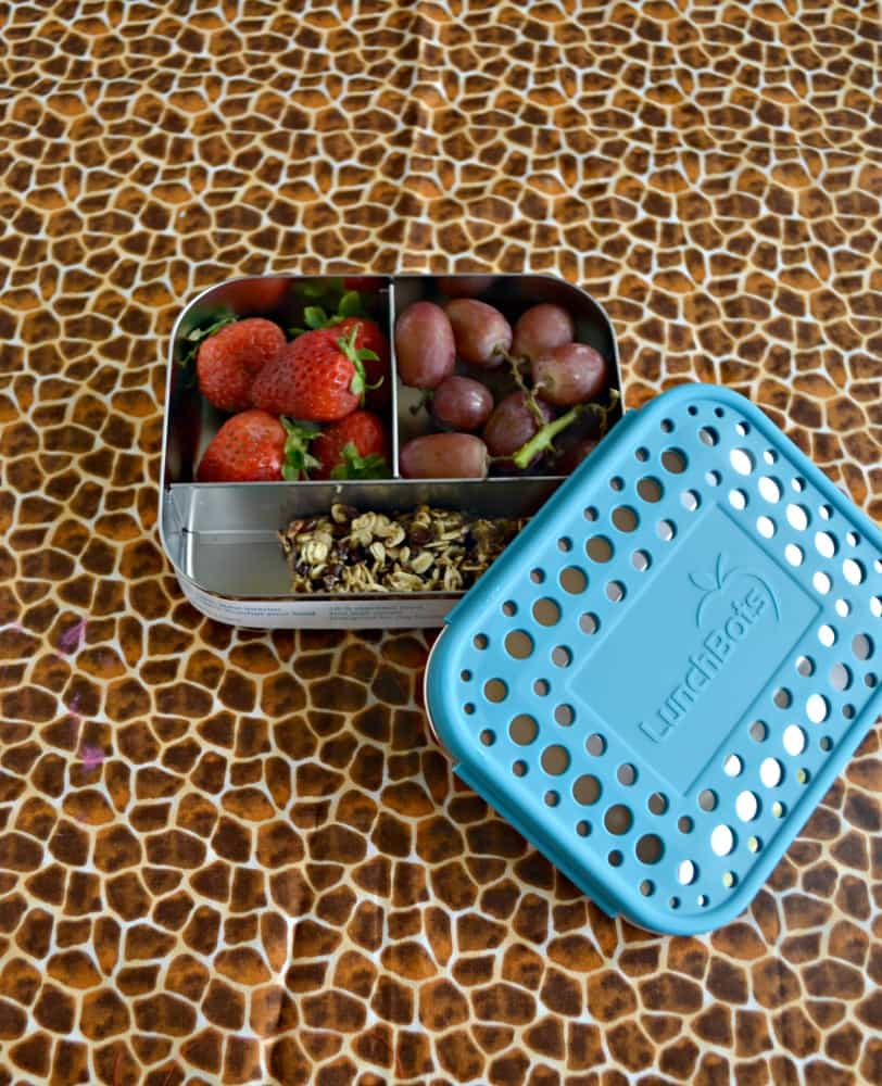 Grab your stainless steal LunchBots container and pack up your favorite snacks!