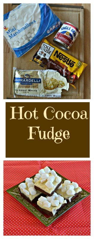 Everything you need to make Hot Cocoa Fudge