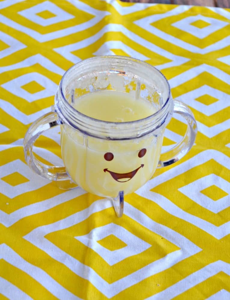 Baby Food Friday: Apple Puree