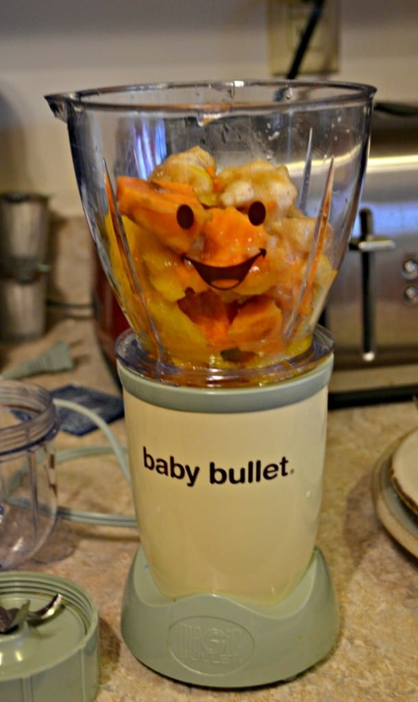 Baby Food Fridays: Tropical Puree (stage 2 food)