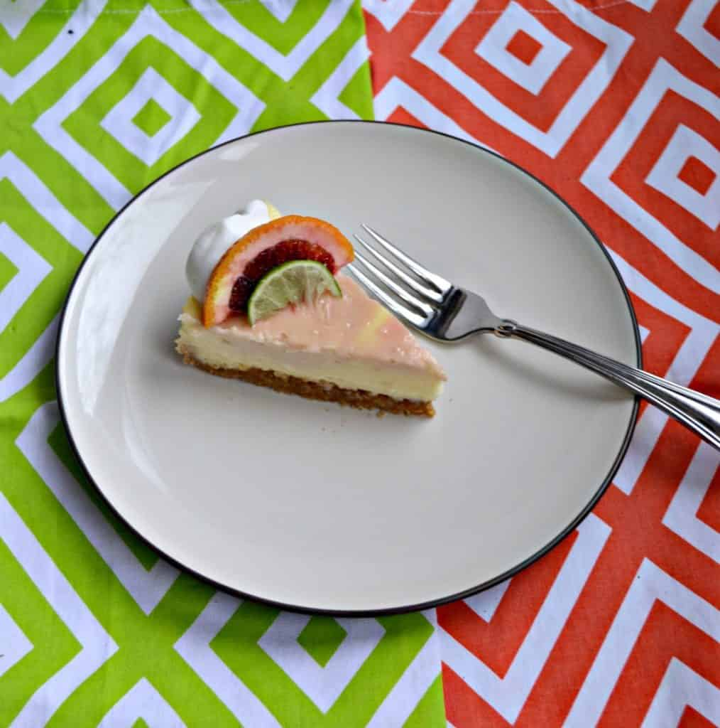 Grab a fork and take a bite of this creamy Blood Orange Margarita Cheesecake