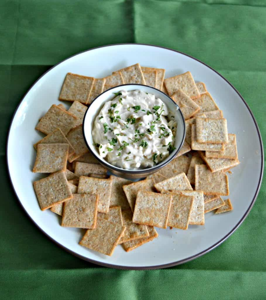 Sour Cream and Onion Cheddar Dip is best served with crackers and chips.
