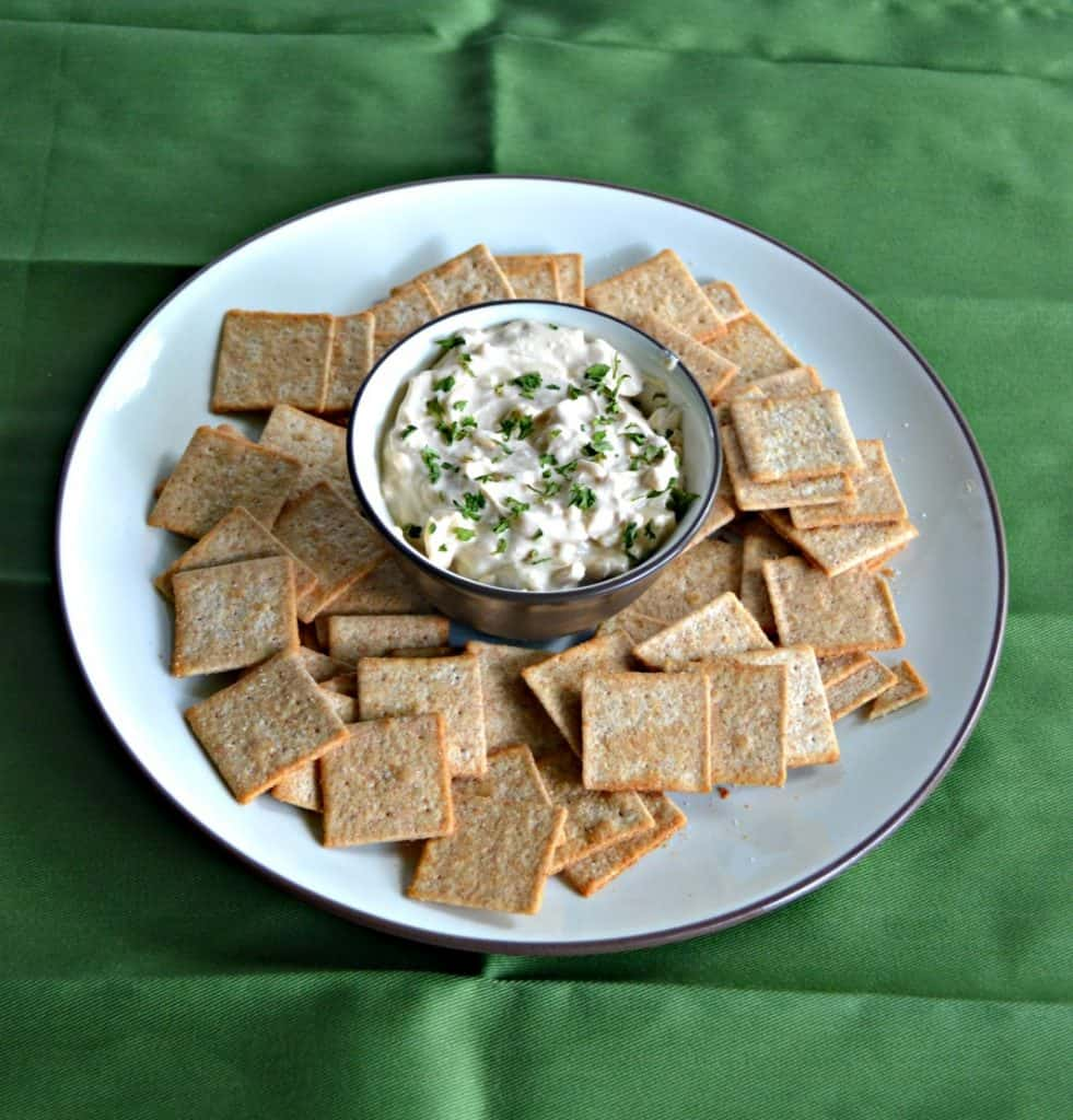Grab your favorite chip or cracker and dip into this tasty Sour Cream and Onion Cheddar Dip