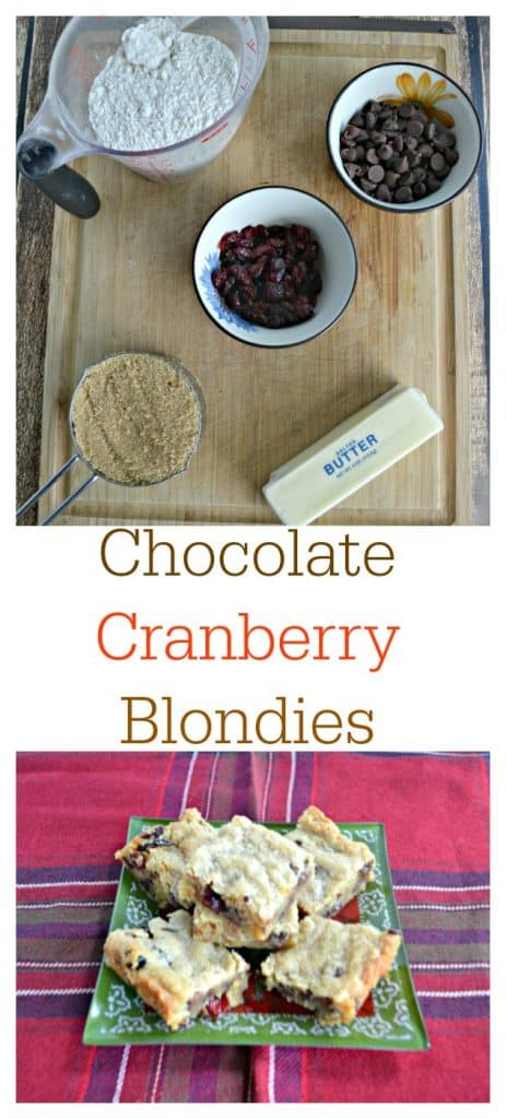 It's easy to make these Chocolate Cranberry Blondies!