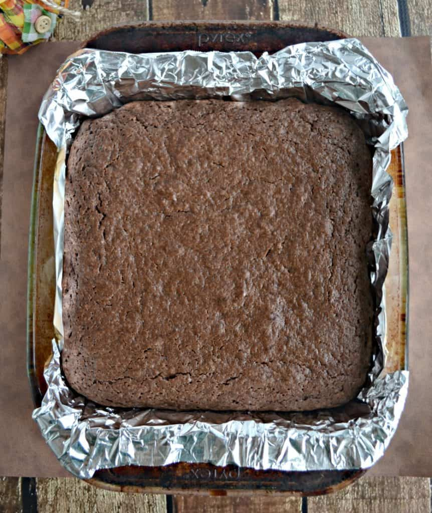 Mocha Chocolate Brownies are a delicious treat!