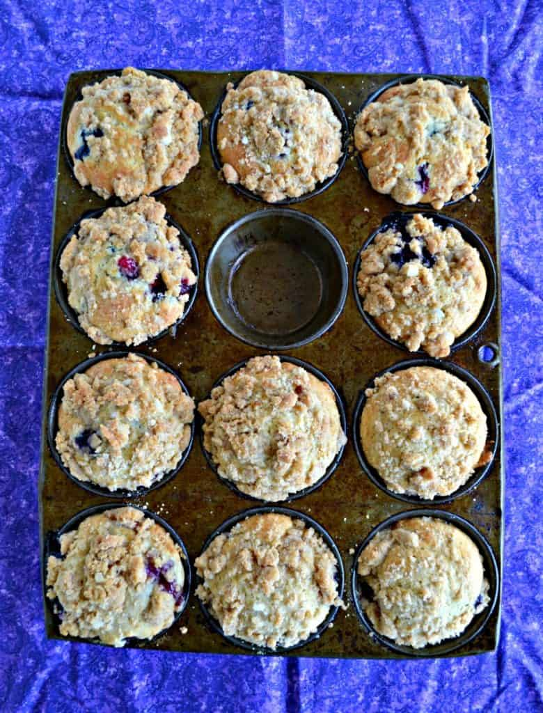 A muffin tin with 11 Sourdough Berry Muffins in it on a purple place mat.