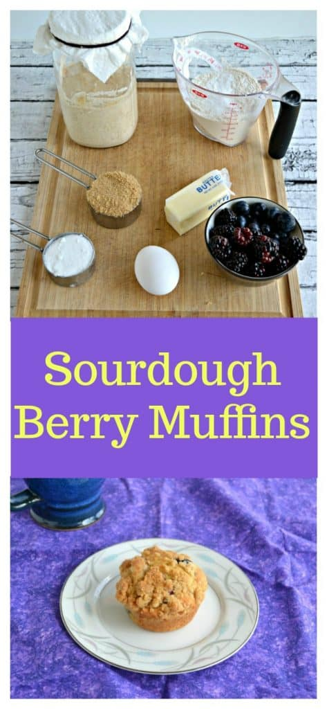 Pin image: Ingredients used for Sourdough muffins on a cutting board, text overlay, a muffin on a white plate sitting on a purple place mat with a cup of coffee in the corner.