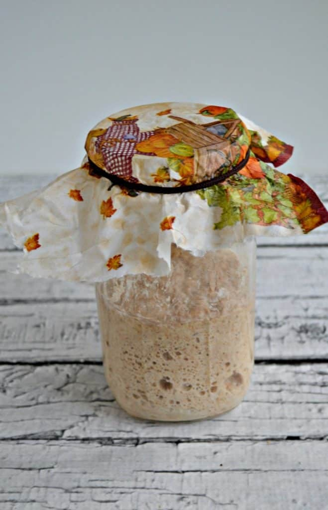 Glass jar with bubbling sourdough starter and a fall napkin covering the top