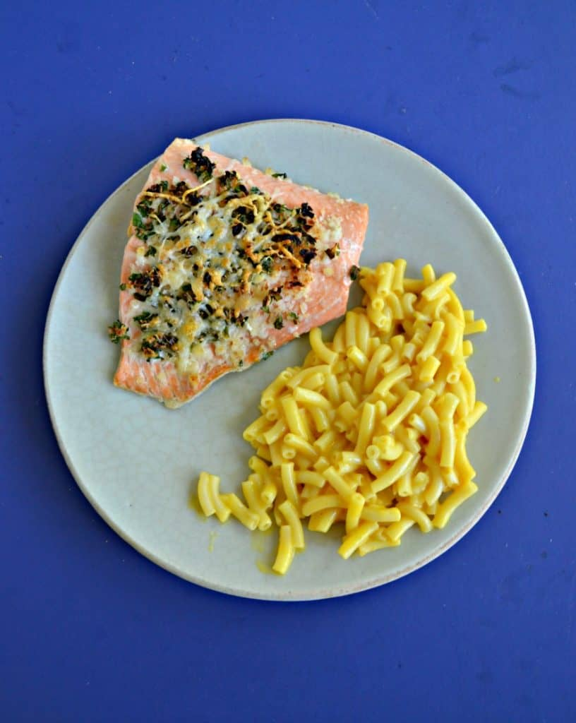 A piece of broiled salmon topped with herbs with a side of macaroni and cheese on a plate with a blue background.