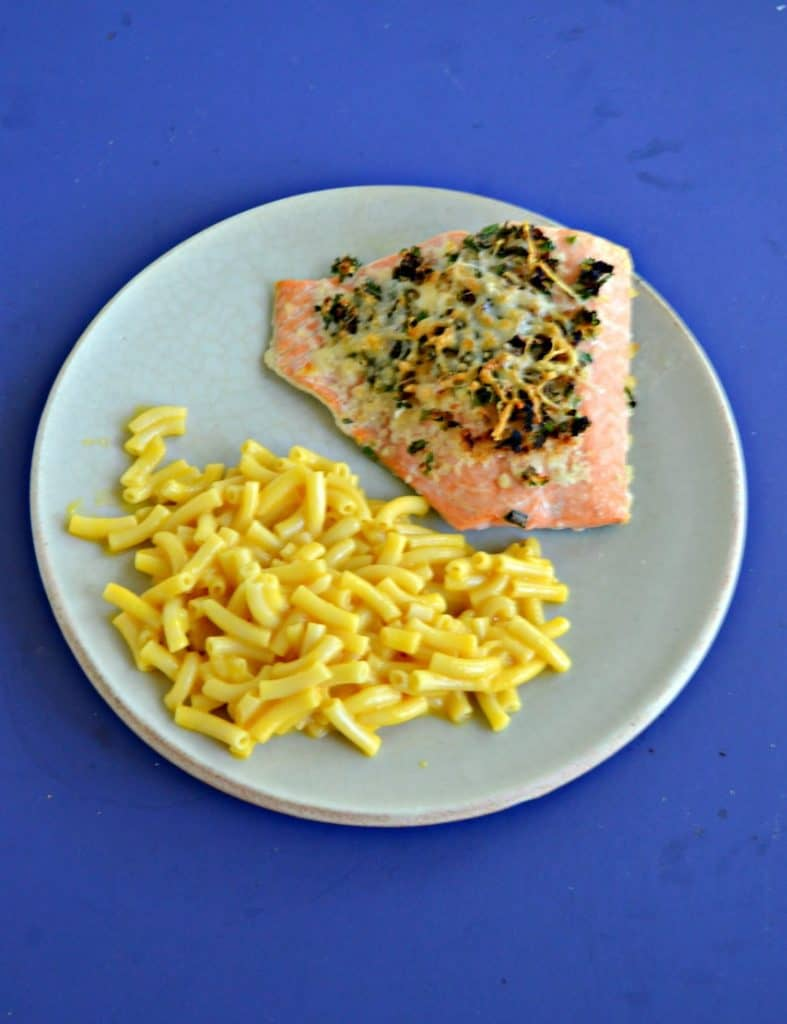 A plate with a large piece of salmon topped with herb and a side of macaroni and cheese on a blue background.