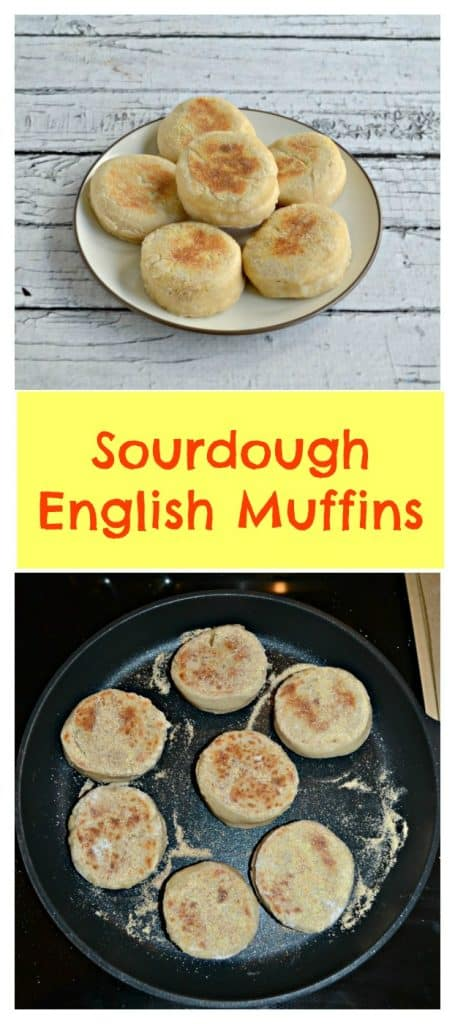 Pin Image: A plate of 6 English muffins, text overlay, 6 English muffins cooking in a black skillet.